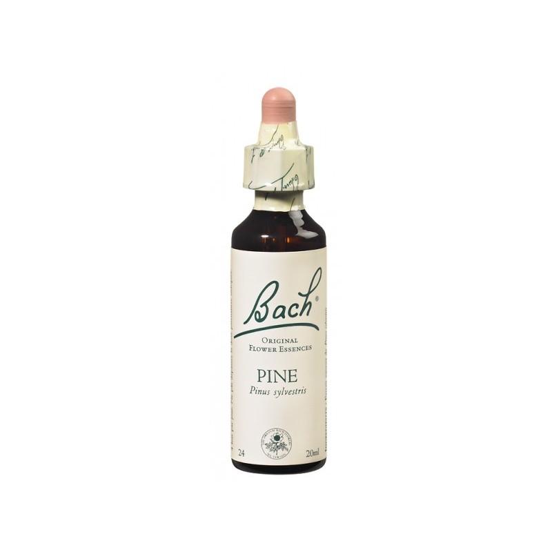 Fleur de Bach PINE - 20ml - PHARMACIE VERTE - Herboristerie à Nantes depuis 1942 - Plantes en Vrac - Tisane - EPS - Bourgeon - M