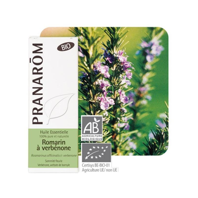 Romarin à Verbénone Bio HE - 5ml - PHARMACIE VERTE - Herboristerie à Nantes depuis 1942 - Plantes en Vrac - Tisane - EPS - Bourg
