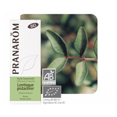 Lentisque Pistachier HE - 5ml - PHARMACIE VERTE - Herboristerie à Nantes depuis 1942 - Plantes en Vrac - Tisane - EPS - Homéopat