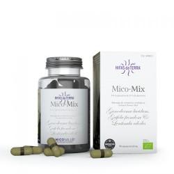 Mico Mix Micosalud - 70 capsules - PHARMACIE VERTE - Herboristerie à Nantes depuis 1942 - Plantes en Vrac - Tisane - EPS - Bourg