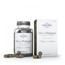 Mico Polypor Micosalud - 70 capsules - PHARMACIE VERTE - Herboristerie à Nantes depuis 1942 - Plantes en Vrac - Tisane - EPS - B