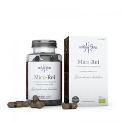 Mico Rei Micosalud - 70 capsules - PHARMACIE VERTE - Herboristerie à Nantes depuis 1942 - Plantes en Vrac - Tisane - EPS - Bourg