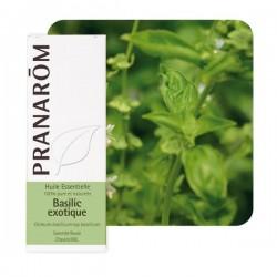 Basilic Exotique HE - 10ml - PHARMACIE VERTE - Herboristerie à Nantes depuis 1942 - Plantes en Vrac - Tisane - EPS - Bourgeon -
