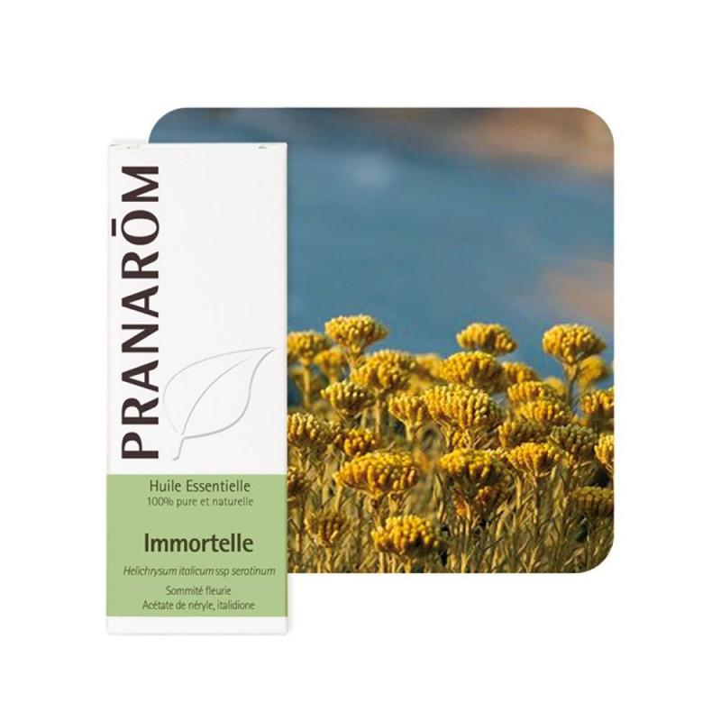Immortelle Bio HE - 5ml - PHARMACIE VERTE - Herboristerie à Nantes depuis 1942 - Plantes en Vrac - Tisane - EPS - Bourgeon - Myc