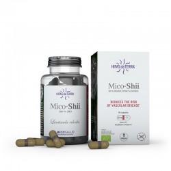 Mico Shii Micosalud - 70 capsules - PHARMACIE VERTE - Herboristerie à Nantes depuis 1942 - Plantes en Vrac - Tisane - EPS - Bour