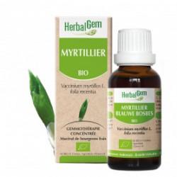 HERBALGEM MYRTILLIER - 30ml - PHARMACIE VERTE - Herboristerie à Nantes depuis 1942 - Plantes en Vrac - Tisane - EPS - Bourgeon -