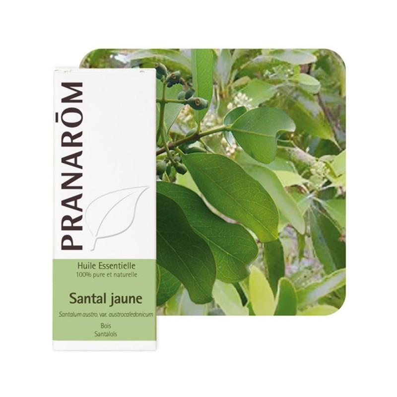 Santal Jaune HE - 5ml - PHARMACIE VERTE - Herboristerie à Nantes depuis 1942 - Plantes en Vrac - Tisane - EPS - Bourgeon - Mycot
