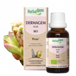 HERBALGEM DERMAGEM - 30ml - PHARMACIE VERTE - Herboristerie à Nantes depuis 1942 - Plantes en Vrac - Tisane - EPS - Homéopathie