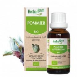 HERBALGEM POMMIER - 30ml - PHARMACIE VERTE - Herboristerie à Nantes depuis 1942 - Plantes en Vrac - Tisane - EPS - Homéopathie -