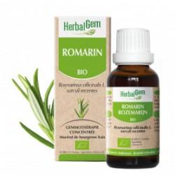 HERBALGEM ROMARIN - 30ml - PHARMACIE VERTE - Herboristerie à Nantes depuis 1942 - Plantes en Vrac - Tisane - EPS - Bourgeon - My