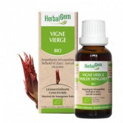 HERBALGEM VIGNE VIERGE - 30ml - PHARMACIE VERTE - Herboristerie à Nantes depuis 1942 - Plantes en Vrac - Tisane - EPS - Homéopat