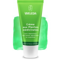 Crème aux Plantes Médicinales- Skin Fook - 30ml - PHARMACIE VERTE - Herboristerie à Nantes depuis 1942 - Plantes en Vrac - Tisan