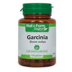 Garcinia Cambodgia - 200 Gélules - PHARMACIE VERTE - Herboristerie à Nantes depuis 1942 - Plantes en Vrac - Tisane - EPS - Homéo
