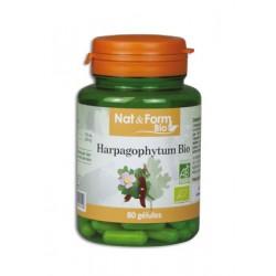 Harpagophytum Bio - 200 Gélules - PHARMACIE VERTE - Herboristerie à Nantes depuis 1942 - Plantes en Vrac - Tisane - EPS - Homéop