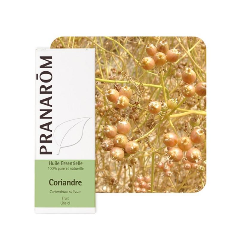 Coriandre HE - 10ml - PHARMACIE VERTE - Herboristerie à Nantes depuis 1942 - Plantes en Vrac - Tisane - EPS - Homéopathie - Gemm