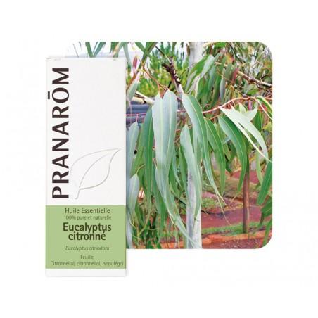 Eucalyptus Citronné HE - 10ml - PHARMACIE VERTE - Herboristerie à Nantes depuis 1942 - Plantes en Vrac - Tisane - EPS - Homéopat