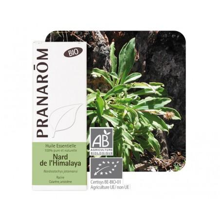 Nard de l'Himalaya HE - 5ml - PHARMACIE VERTE - Herboristerie à Nantes depuis 1942 - Plantes en Vrac - Tisane - EPS - Homéopathi