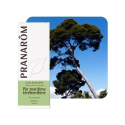 Pin Maritime Térébenthine HE - 10ml - PHARMACIE VERTE - Herboristerie à Nantes depuis 1942 - Plantes en Vrac - Tisane - EPS - Ho
