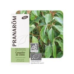 Cannelier de Chine HE - 10ml - PHARMACIE VERTE - Herboristerie à Nantes depuis 1942 - Plantes en Vrac - Tisane - Phytothérapie -