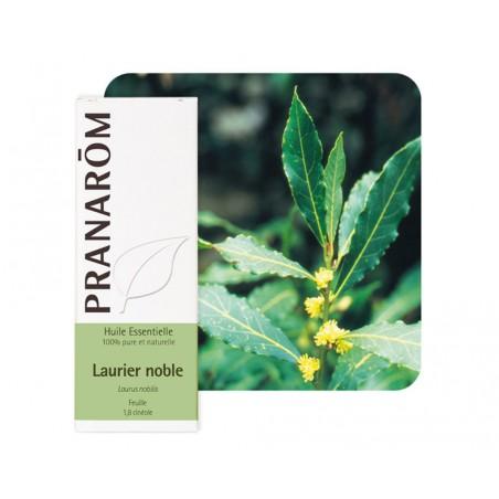Laurier Noble HE - 5ml - PHARMACIE VERTE - Herboristerie à Nantes depuis 1942 - Plantes en Vrac - Tisane - EPS - Homéopathie - G
