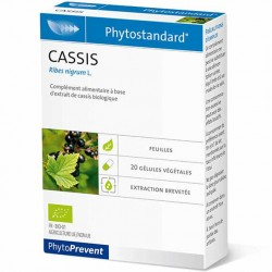 PhytoStandard CASSIS - 20 gélules - PHARMACIE VERTE - Herboristerie à Nantes depuis 1942 - Plantes en Vrac - Tisane - EPS - Homé