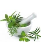 Catégorie V - Herboristerie depuis 1942 - Nantes - EPS - bourgeon - aromatherapie - plante en vrac : Valériane Racine Coupée ...
